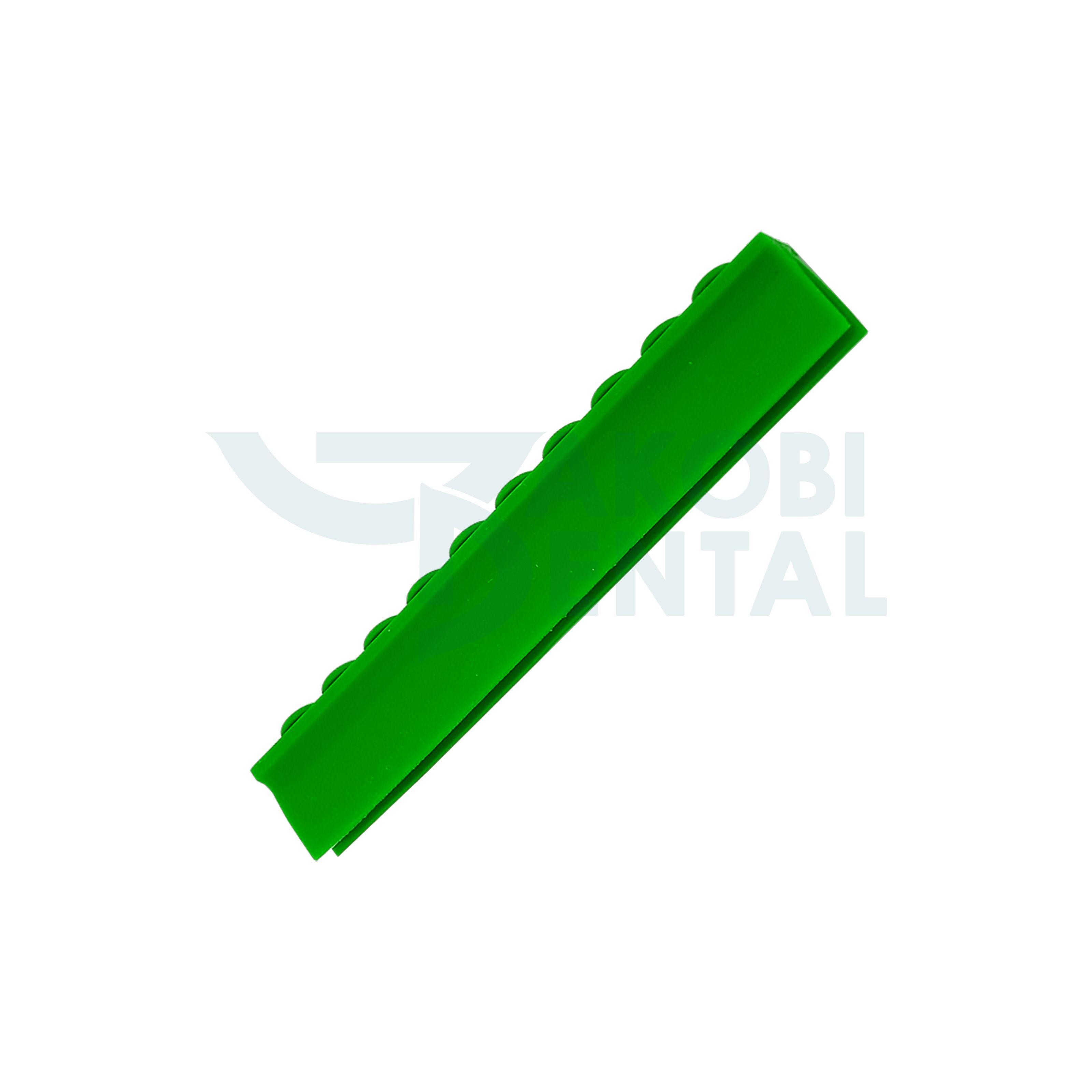 Deckelschiene für 10 Instrumente, grün